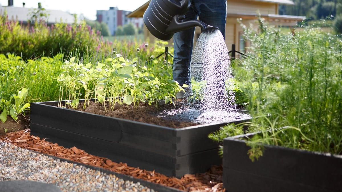 laatikkoviljely vinkit vihannesten kasvattamiseen