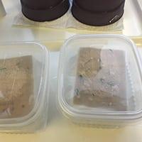 Siementen lauttaidätys Kekkkilä
