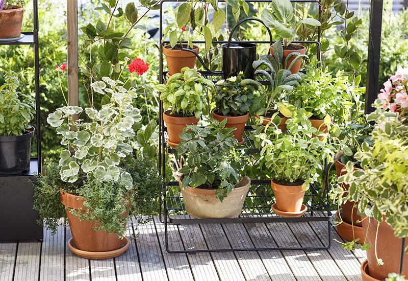 Ruukkuviljelymulta sopii kaikille kasveille 800x550x