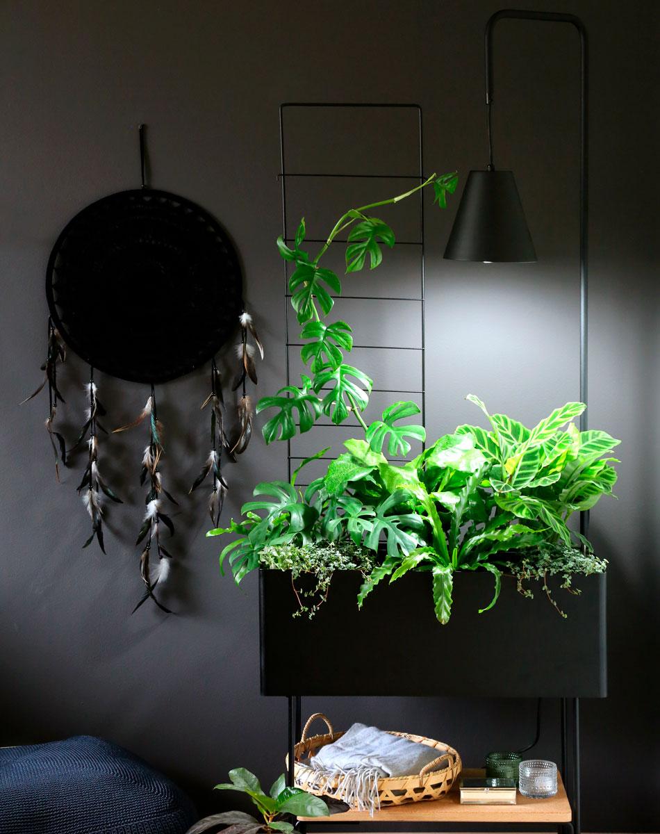 Kekkilä vihervalaisin viherlaatikko tumma sisustus viherkasveja