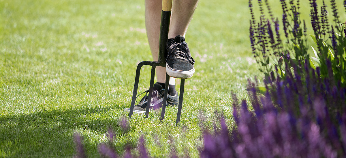 Helpot vinkit vihreälle nurmikolle osa 3 Miten sammalen sa pois nurmikolta Kekkilä
