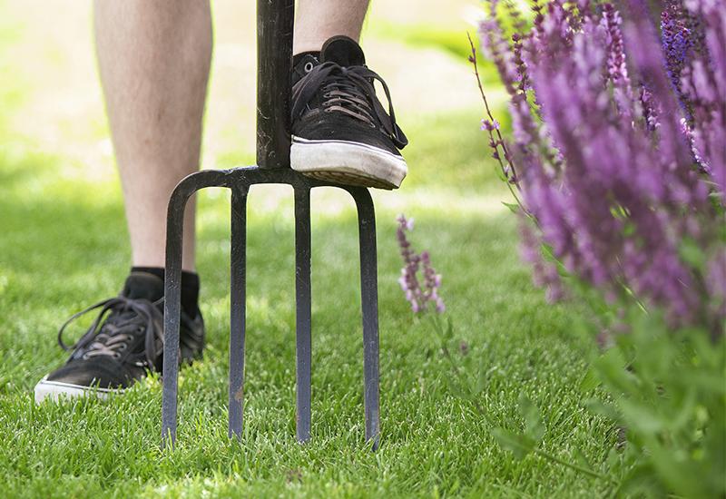 Helpot vinkit vihreälle nurmikolle osa 3 Miten sammalen saa ois nurmikolta Kekkilä
