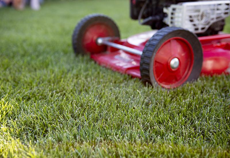 Helpot vinkit vihreälle nurmikolle osa 5 Miten hoidan nurmikkoa kesällä