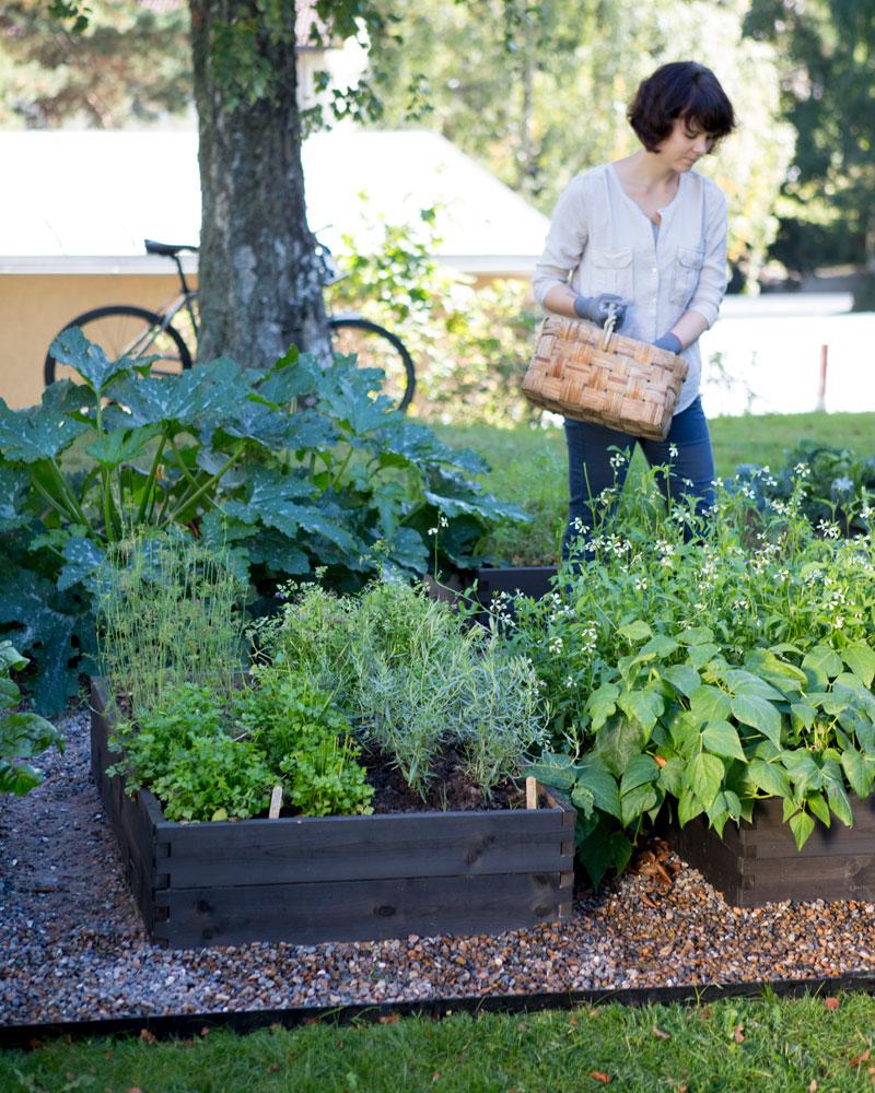 Kekkilä viljelylaatikko kaupunki puutarha