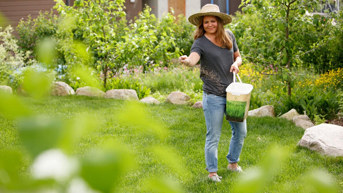 nurmikon hoito helpot vinkit kekkilä