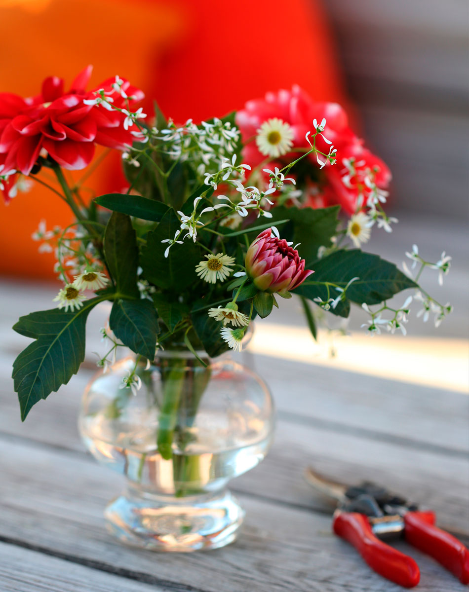 kukkakimppu kesäkukista moderniin tyyliin romanttinen