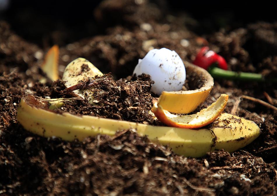 Kompostoi biojäte lämpökompostorissa
