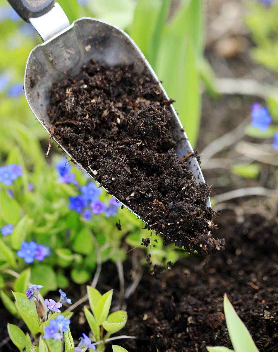 Kompostimulta omasta kompostorista