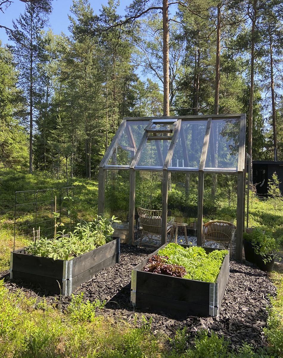 kasvihuone hyötytarha viljelylaatikot